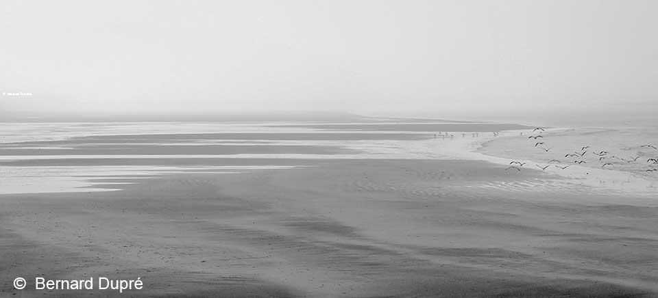 bernard-dupre-photographie-rivages-au-petit-jour
