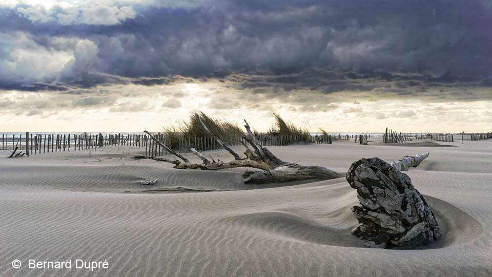 bernard-dupre-photographie-rivages-salin-de-giraud-1