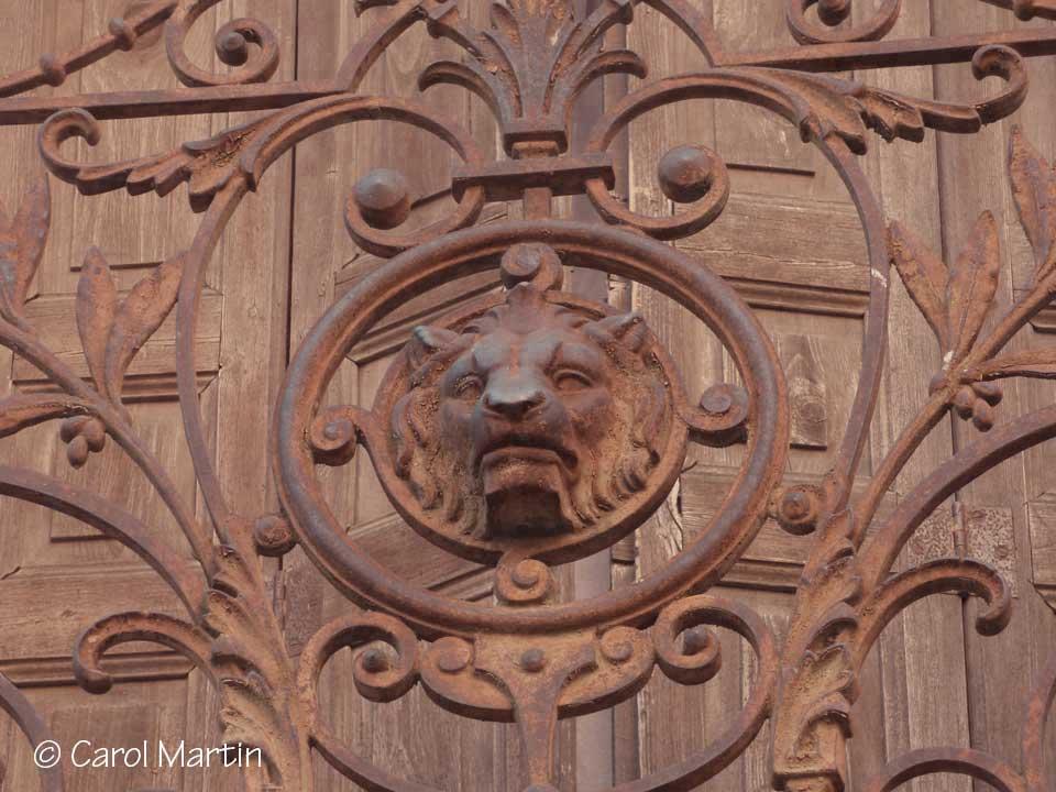 LION-collioure-Carol-martin
