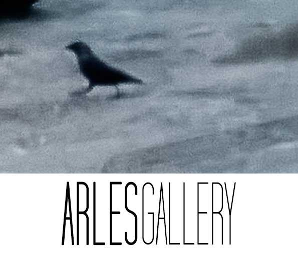 Le-corbeau-et-le-renard-Arles-Gallery