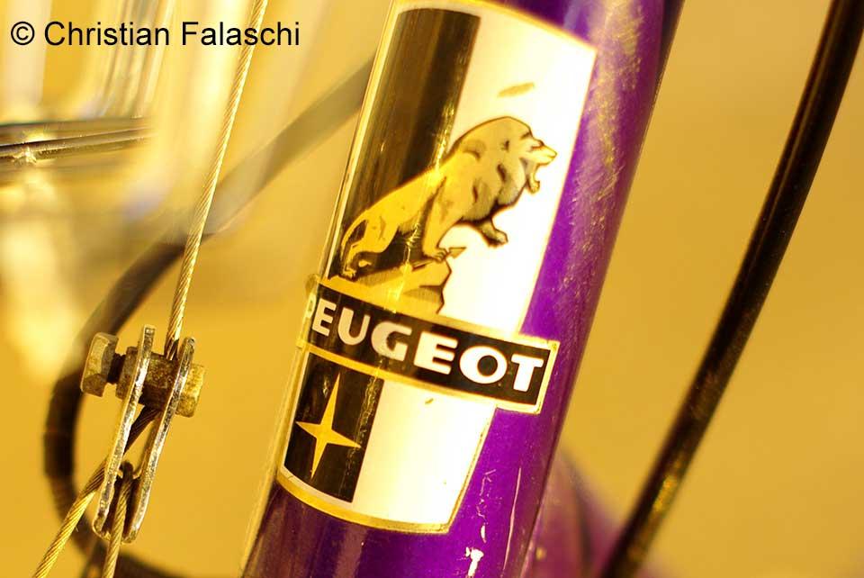 lion-peugeot-christian-falaschi