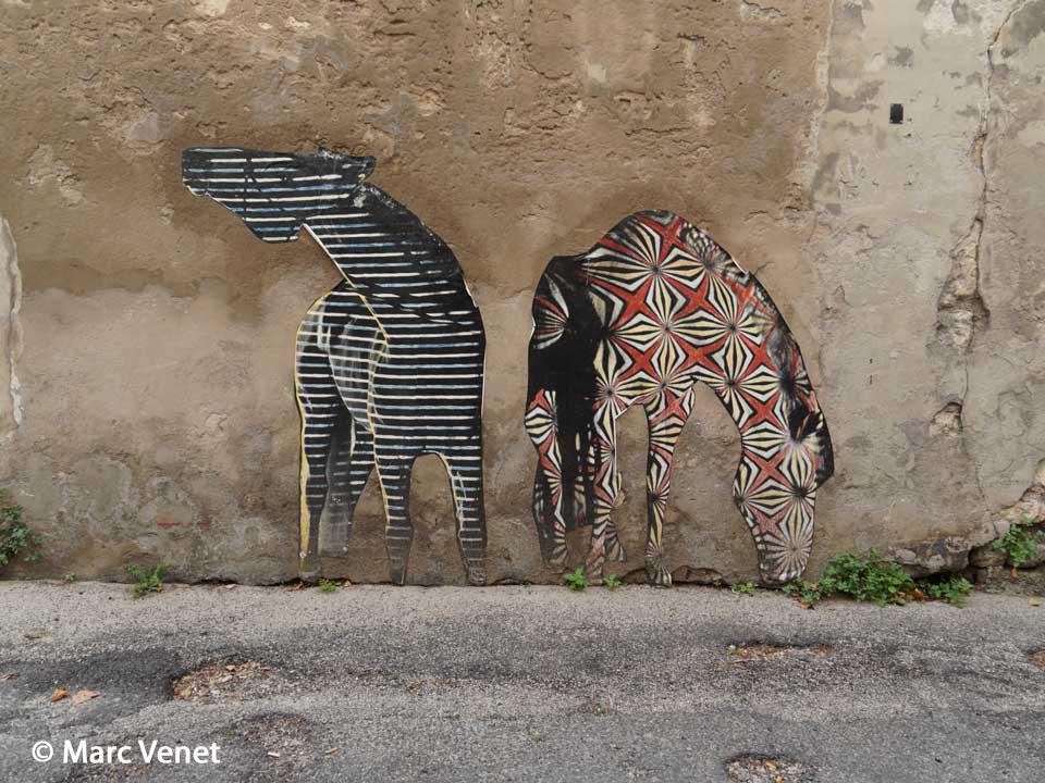 Marc-Venet-photo