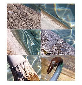 claire fontaine de février 72