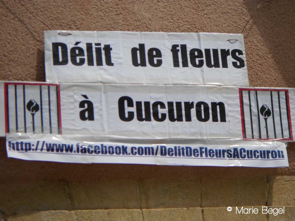 delit-de-fleur-Marie-Begel