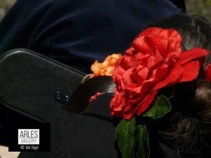 fleur-rouge-arles-gallery