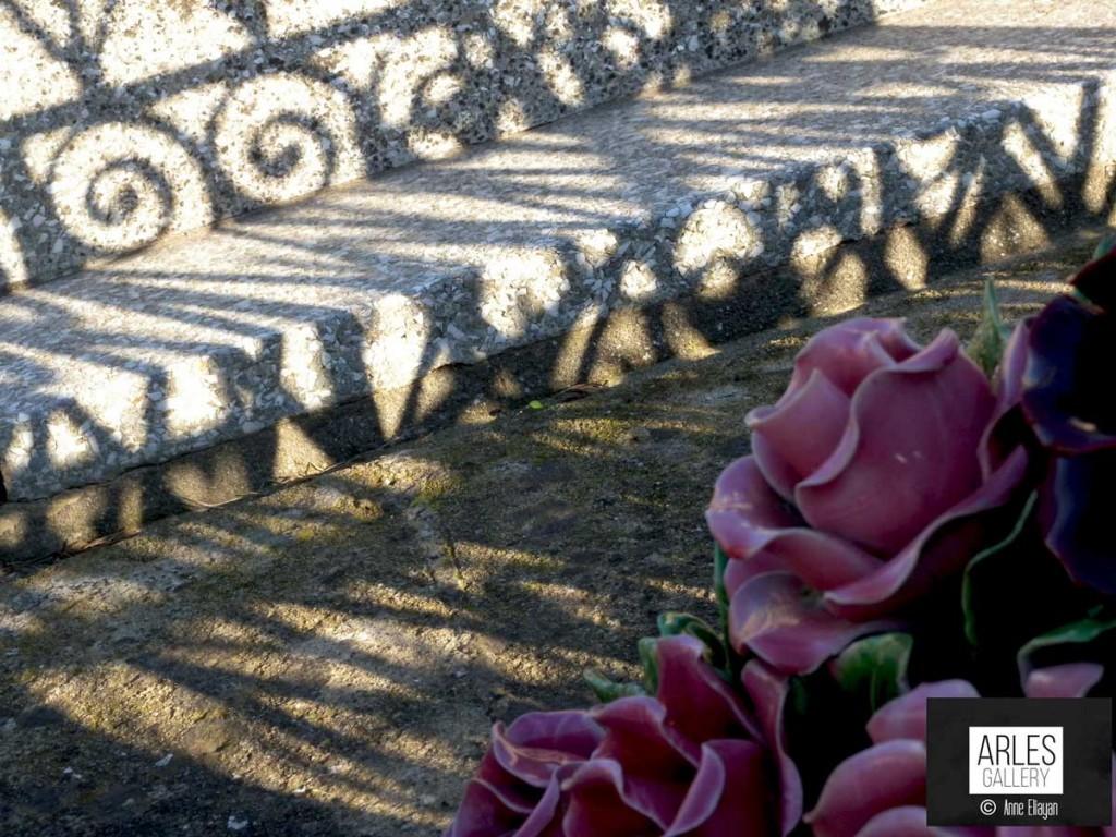 fleurs-arles-gallery