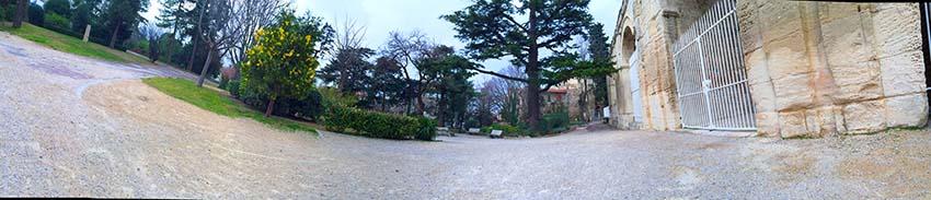 jardin IMG_0073 xs