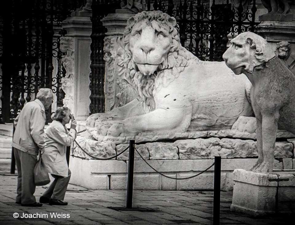 joachim-weiss-lions-de-venise