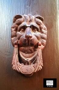 le-lion-de-la-semaine-arles-gallery