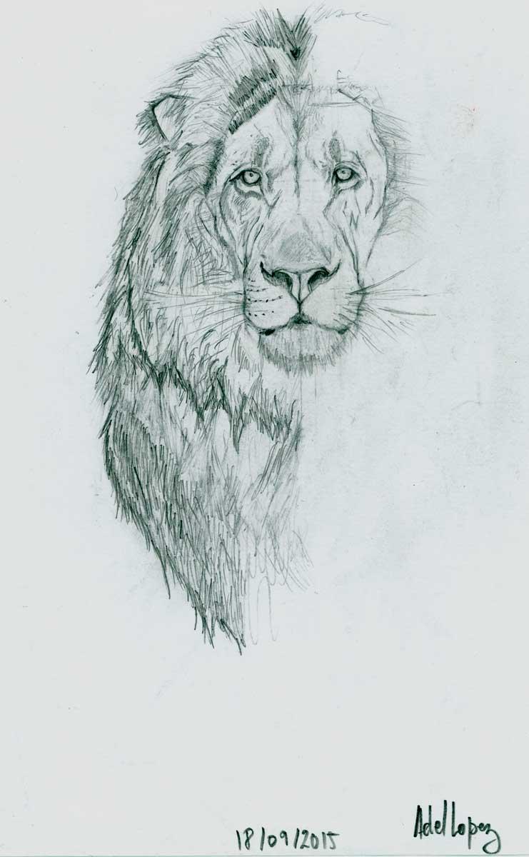 lion-adel-lopez