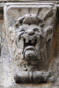 lion-arles-Michel-Wayer