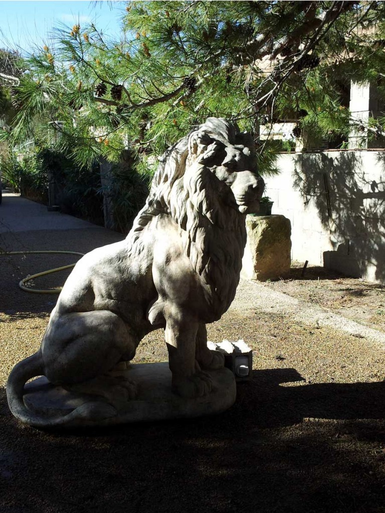 lion-arles-gallery-photo ©Jacques-Trouche