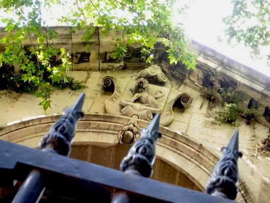 lion-arles-rencontres-photographie