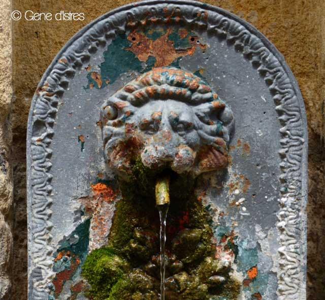 lion-de-bergerac-gene-d'Istres-