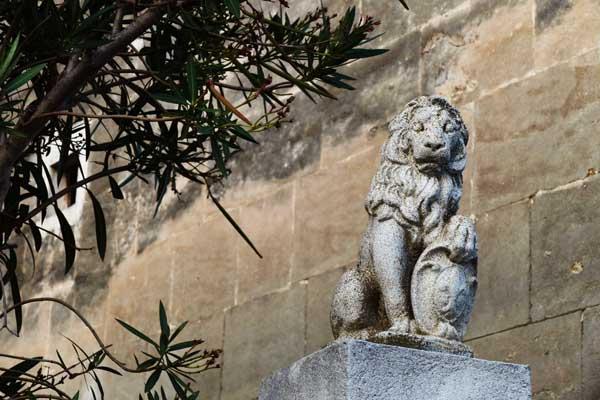 lion-de-la-semaine-34-arles-gallery