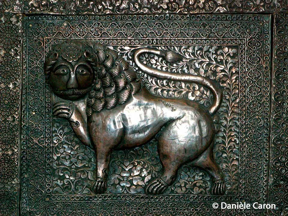 lion-du-Rajasthan--ville-de-Jodhpur-Daniele-Caron
