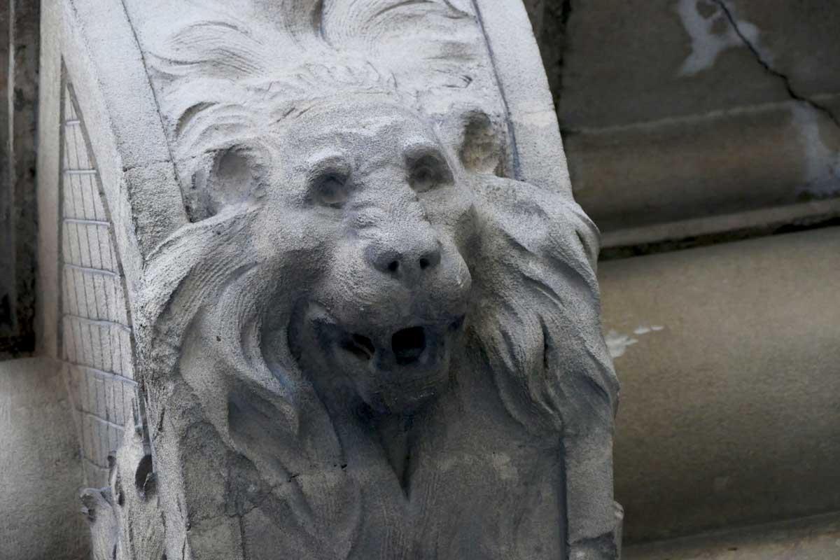 lion-semaine-35-arles-gallery