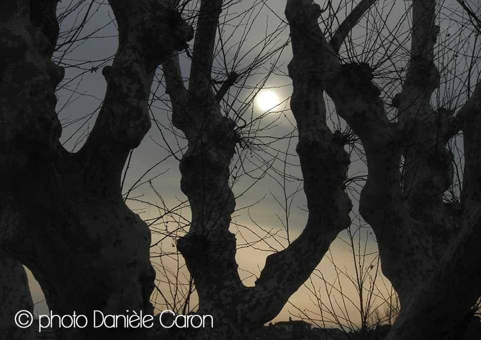 lune-daniele-caron-arles-photographie