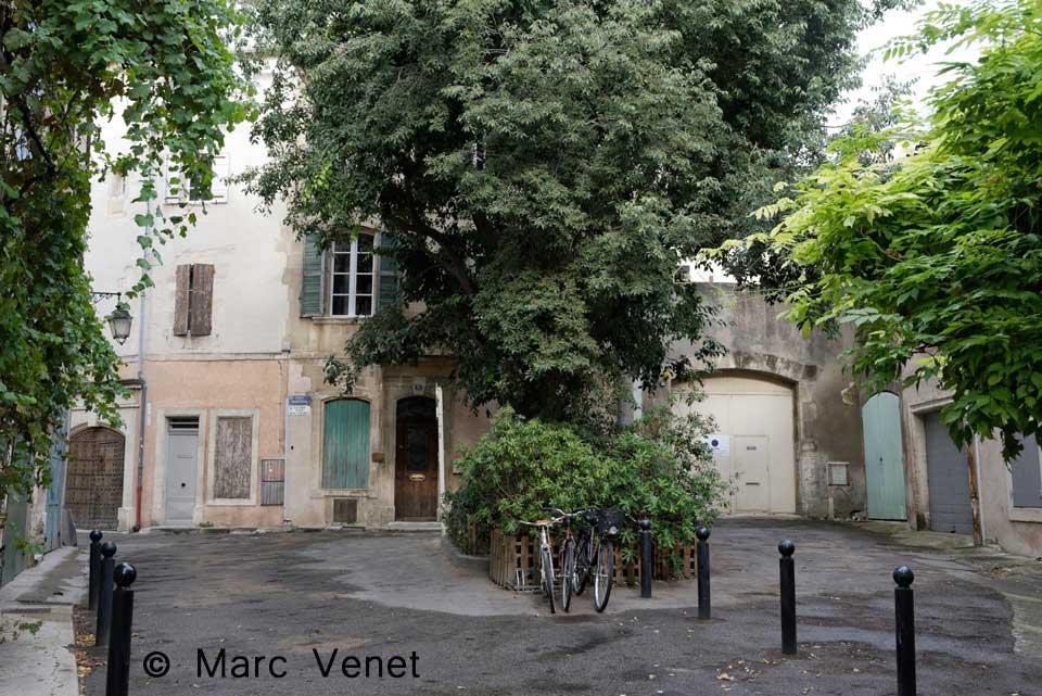 marc-venet-photos
