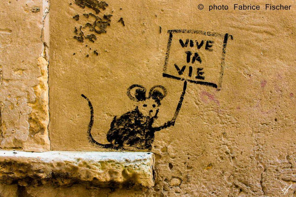photo-ef-Arles-Fabrice-Fischer