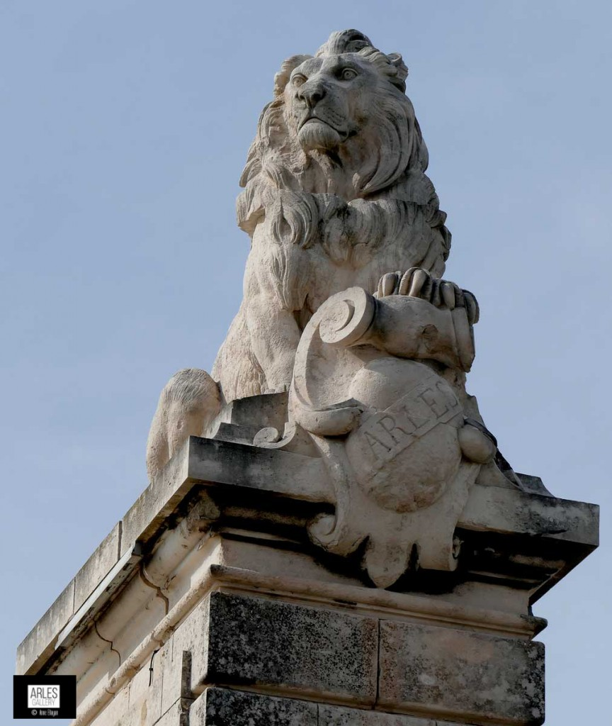 photographie-lion-arles-gare