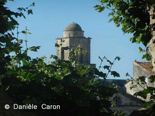 platanes-et-saint-martin-daniele-caron
