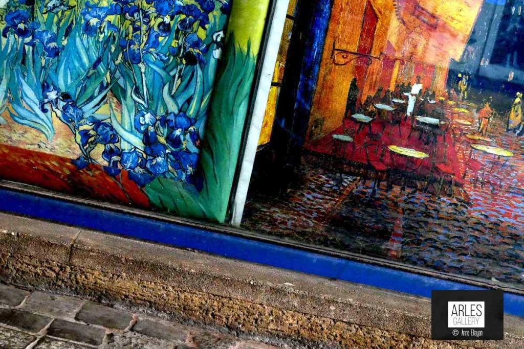 terrasse-et-iris-en-vitrine-arles-gallery