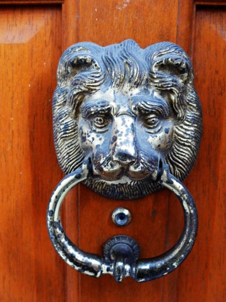 yann-lelievre-heurtoir-lion