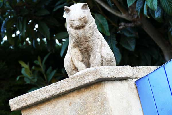 autre-felin-arles-gallery