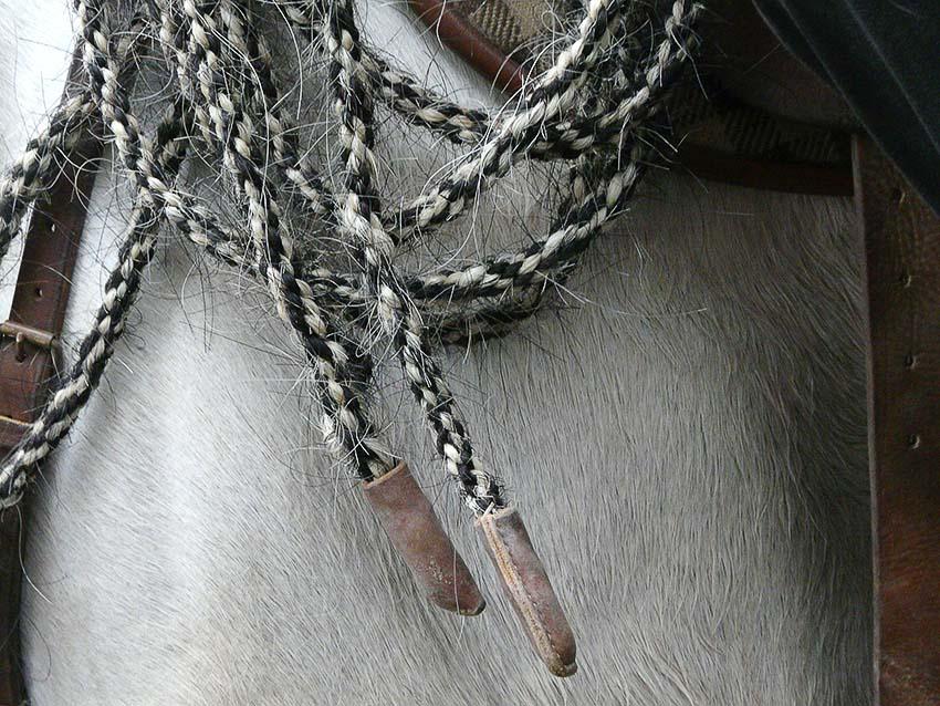 Arles pays du cheval camarguais