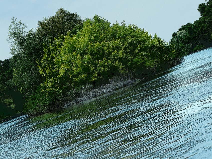 Une île sauvage sur le Rhône