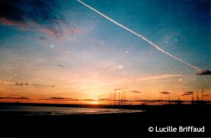 LUCIL11