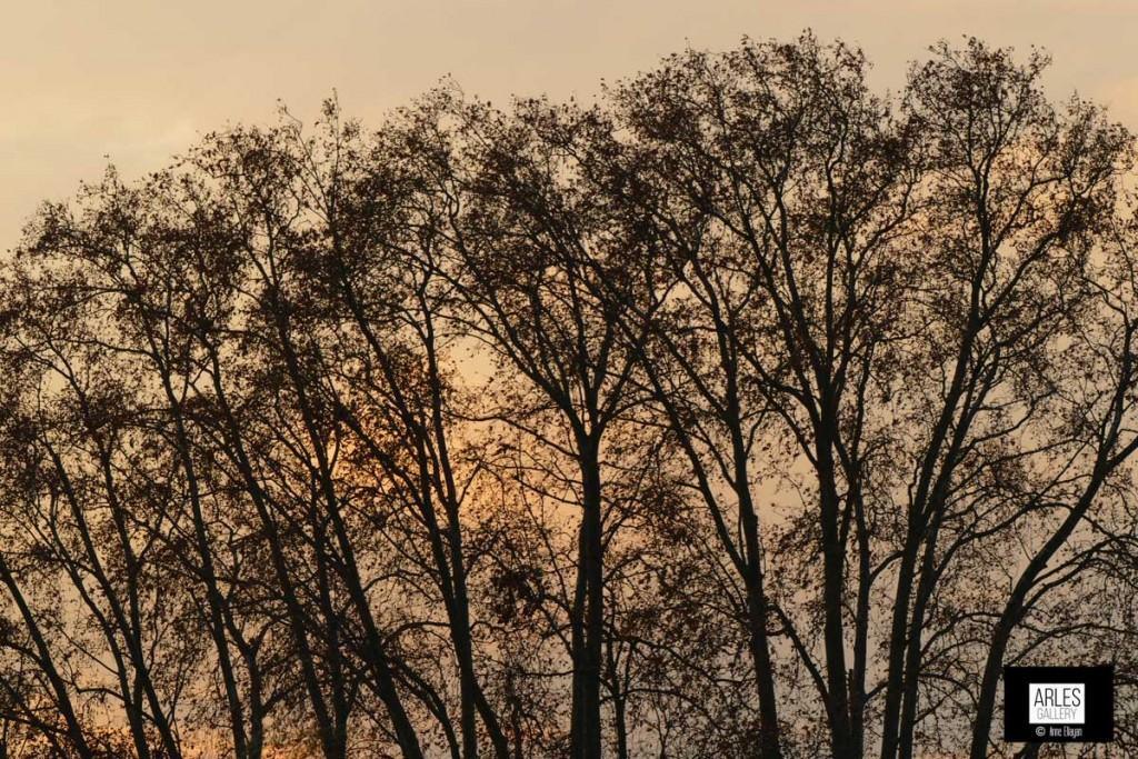autour du musée au coucher du soleil le bel automne s'endort