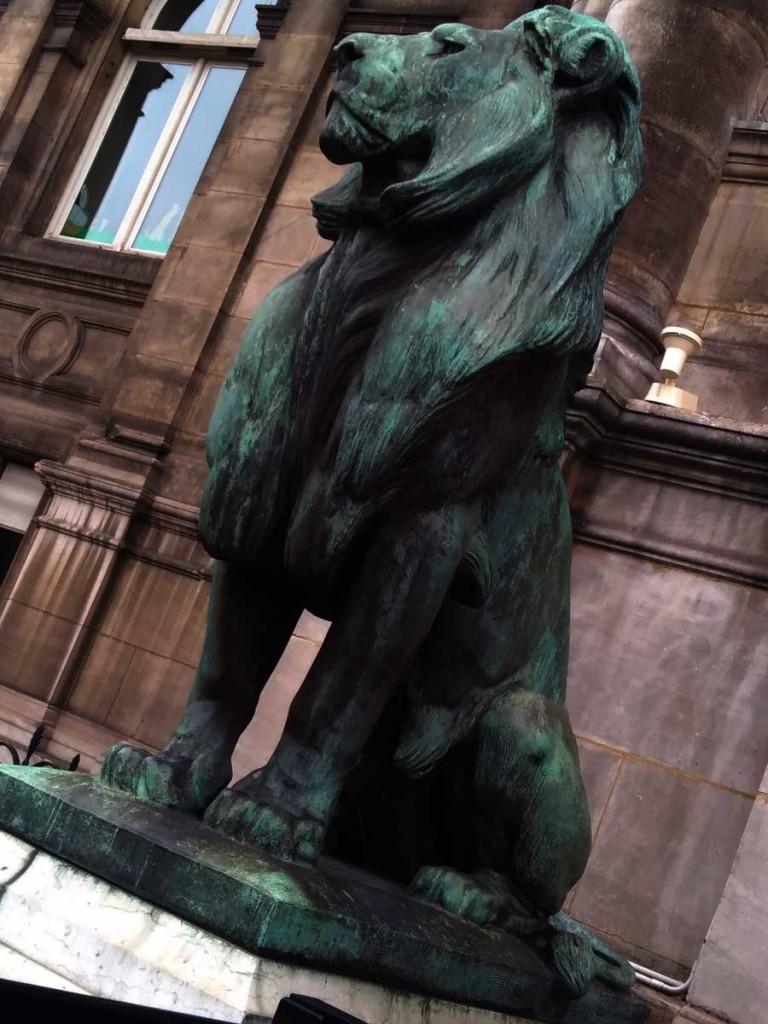 claude-sportis-lion