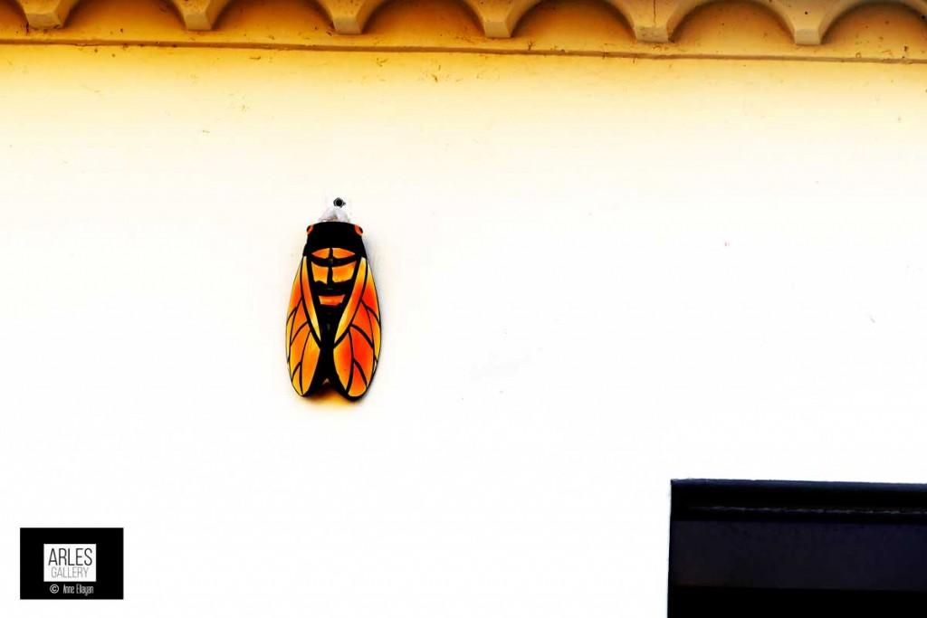 cigale-sur-mur-Arles-Gallery-photo