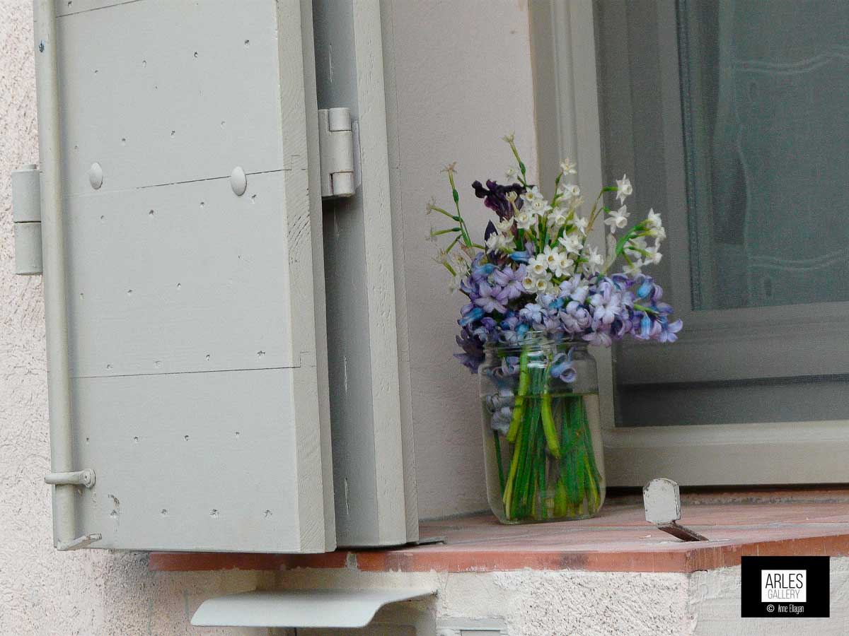 printemps-sur-une-fenetre-arles-gallery