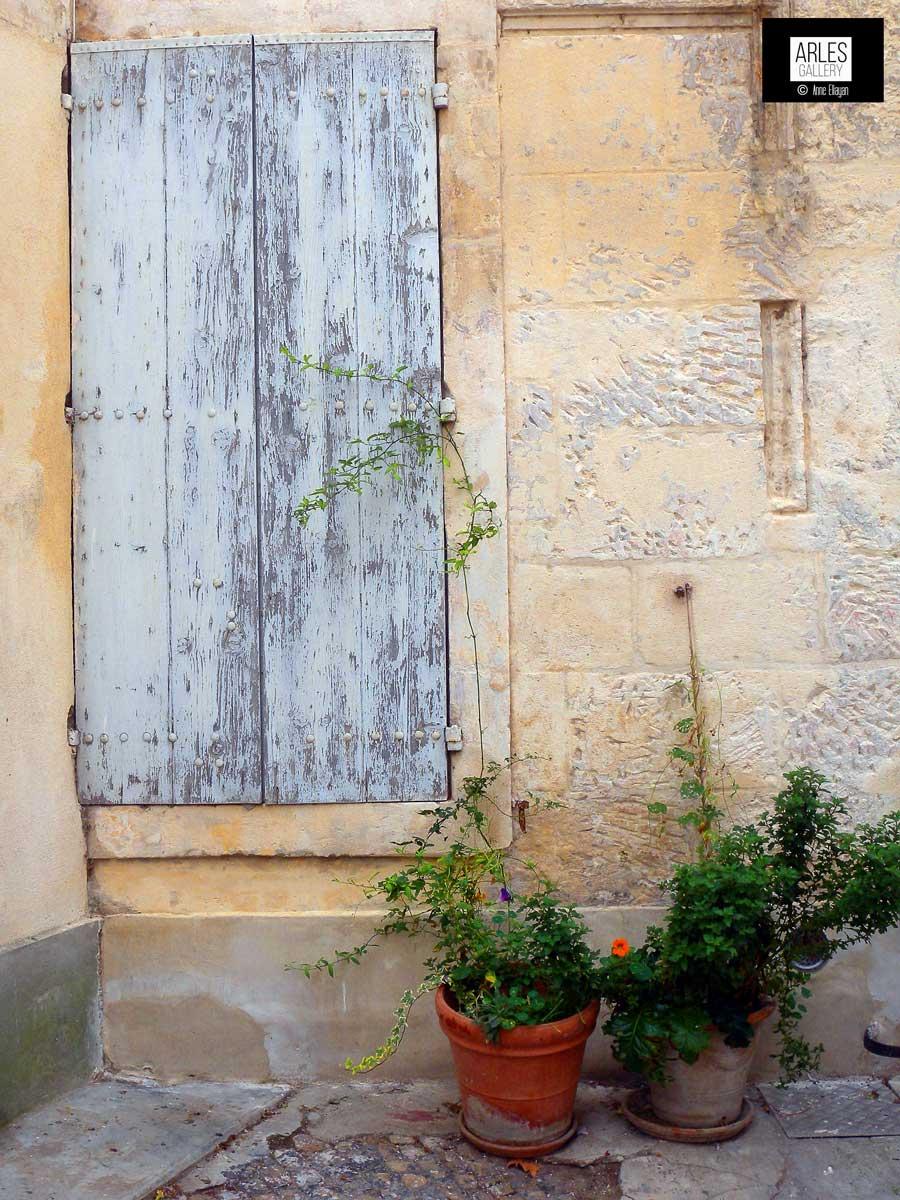 vegetaux-dans-un-pot-arles-gallery