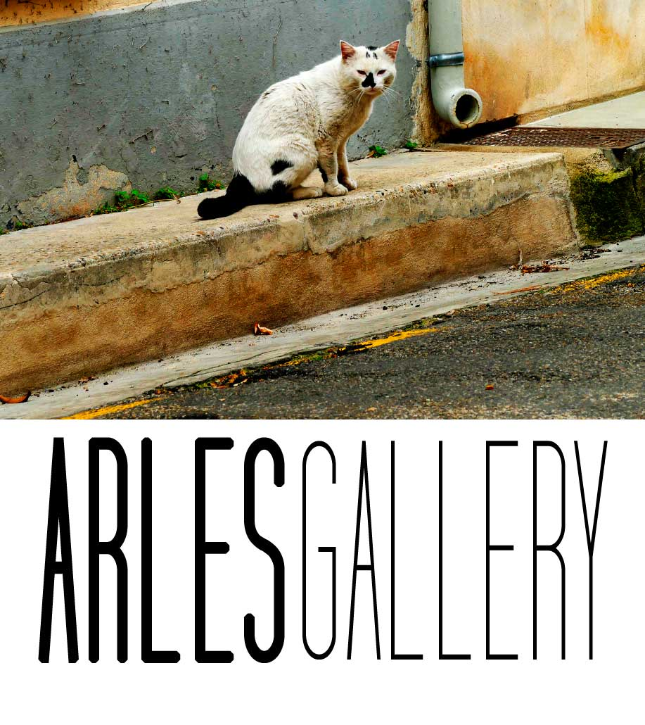 Arles Gallery-galerie de photos sur le net