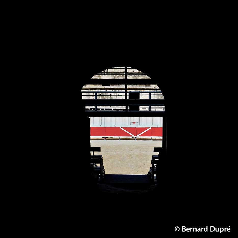 Bernard-Dupré-photo